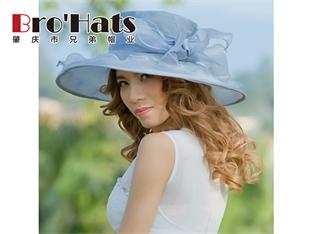 草帽厂商-肇庆哪里有供应高质量的女款复古网纱帽