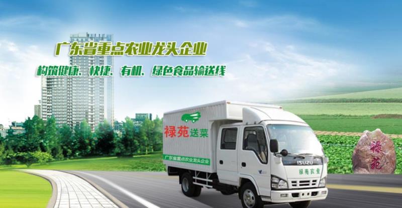 广州周到的农产品配送-广州黄浦区食材配送