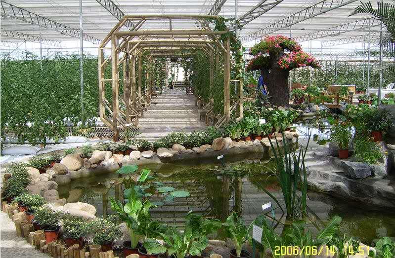 安徽生态餐厅-潍坊生态餐厅厂家