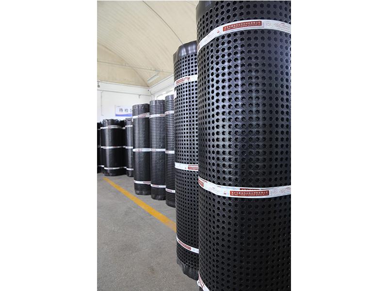 塑料防護排水板廠家 品質好的塑料防護排水板建國偉業供應