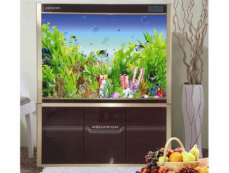 壁挂式生态鱼缸哪家好|潍坊价位合理的生态鱼缸哪里买