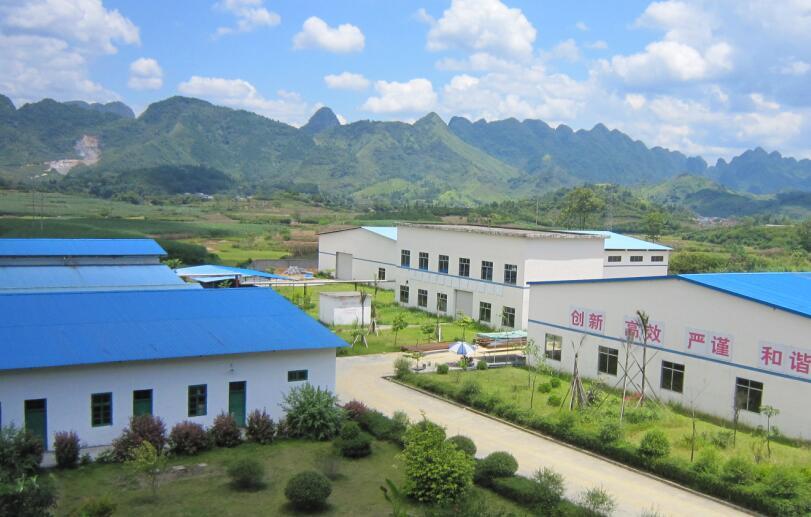 巴马茶油批发-有保障的茶油代理巴马印象有限公司提供