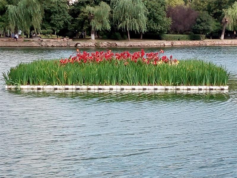 生态浮岛-人工浮岛找河北莲源水生植物-品种优良