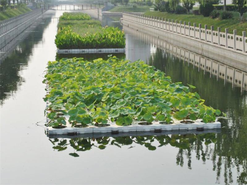 水生態修復 河北生態浮島推薦