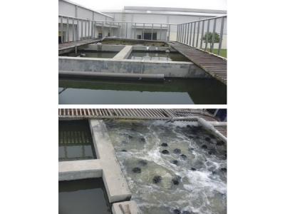 生活污水处理设备安装价格_福建可信赖的生活污水处理设备供应商是哪家