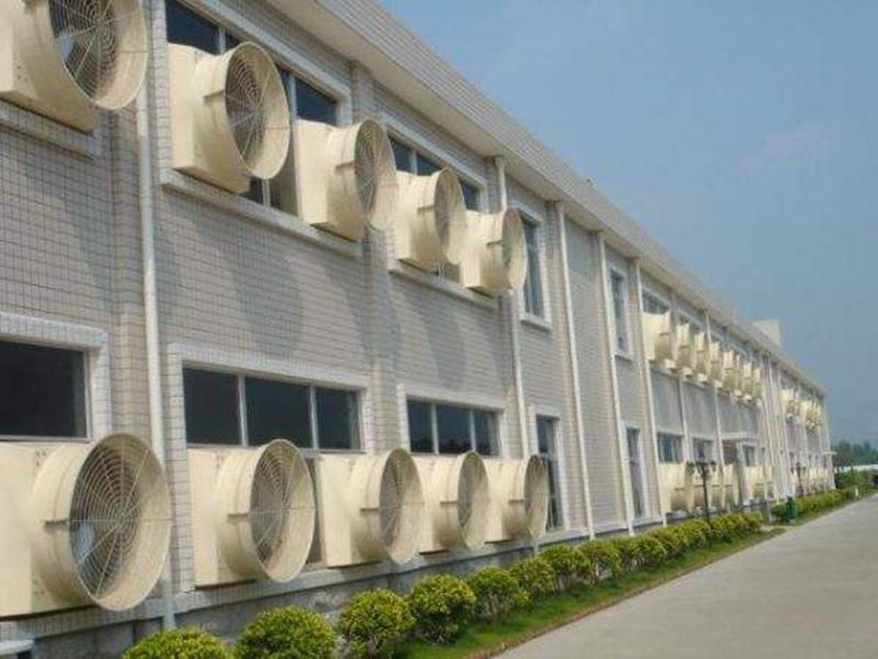 静音负压风机|供应广东信誉好的负压风机