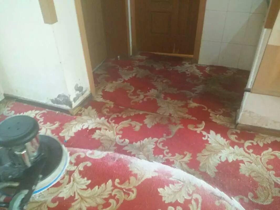西宁地毯清洗公司|靠谱的地毯清洗推荐