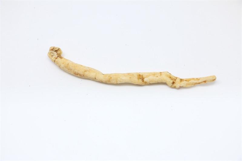 沙參價格|謙城鑫泰提供合格的沙參