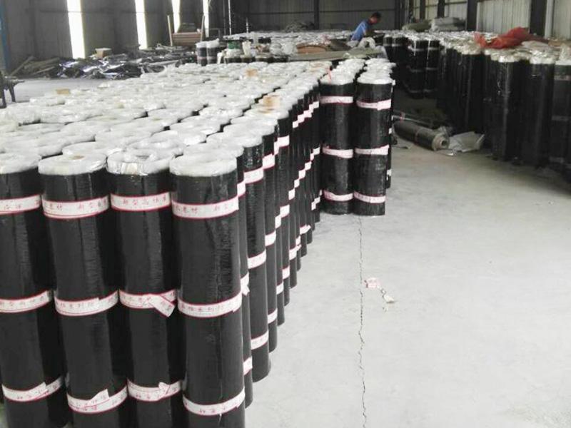 耐用的SBS防水卷材坤阳防水供应-自粘高聚物改性沥青防水卷材厂家