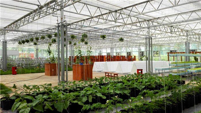 大棚建设/大棚施工/蔬菜大棚/冬暖式大棚--佰辰温室材料公司