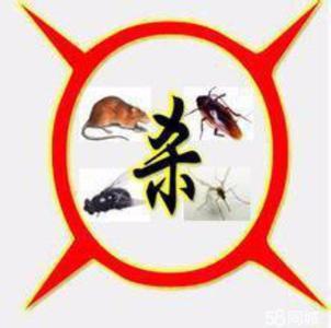 思明灭蟑螂哪家好-同心洁·有口碑的四害消杀公司