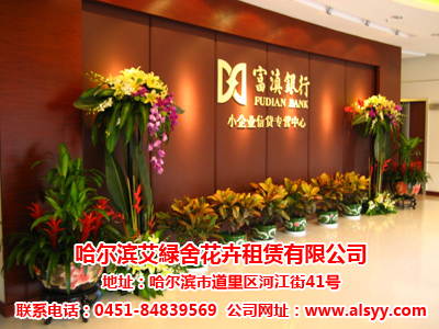 专业的哈尔滨花卉大市场哈尔滨仿真植物墙花卉租赁哪家好-哈尔滨哪家花卉租赁公司声誉好