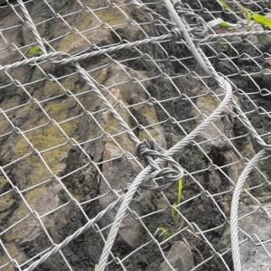 蜘蛛网报价_哪儿能买到合格的绞索网呢