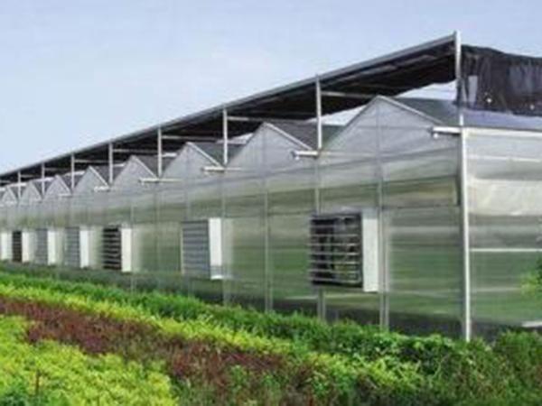 【瑞科】新型智能温室,智能连栋温室,智能连栋温室大棚多少钱?