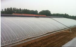 温室认准鑫艺农温室工程——安徽农用塑料大棚