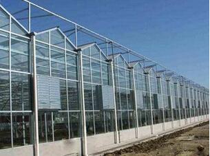 结实耐用的温室哪里有|河南温室大棚建设