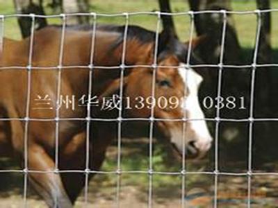 酒泉围栏网价格 供应各种规格围栏网