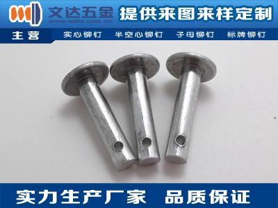 铝窝钉 文达五金物超所值的铝铆钉出售