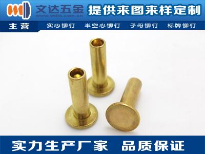 【廠家推薦】質量好的銅鉚釘供應商 圓頭銅鉚釘平頭銅鉚釘