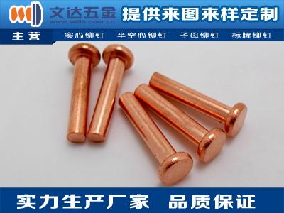 深圳价位合理的铜铆钉哪里买-扁圆头铜铆钉