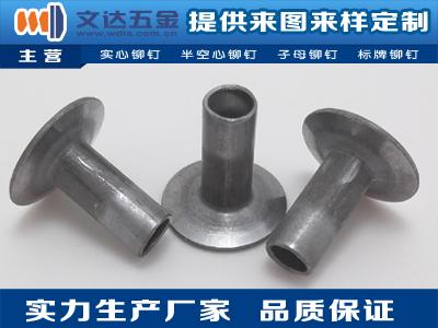 文达五金专业供应铁铆钉,沉头半空心铁铆钉