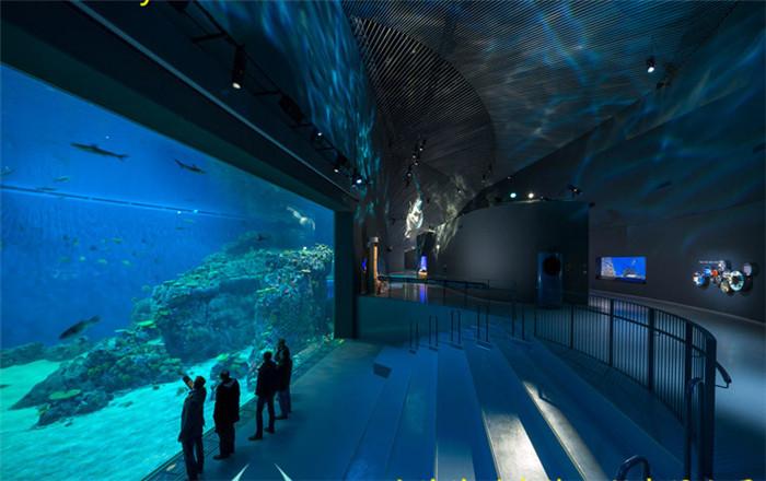 专业海洋馆工程-供应上海价格合理的海洋馆工程