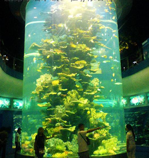 海洋馆设计|出售上海新款圆柱形鱼缸