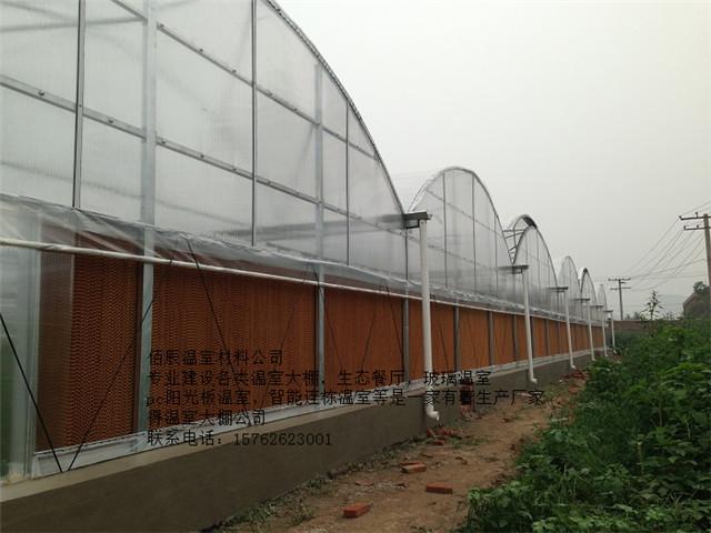 潍坊温室造价怎样|推荐温室造价一直很低专业的温室公司