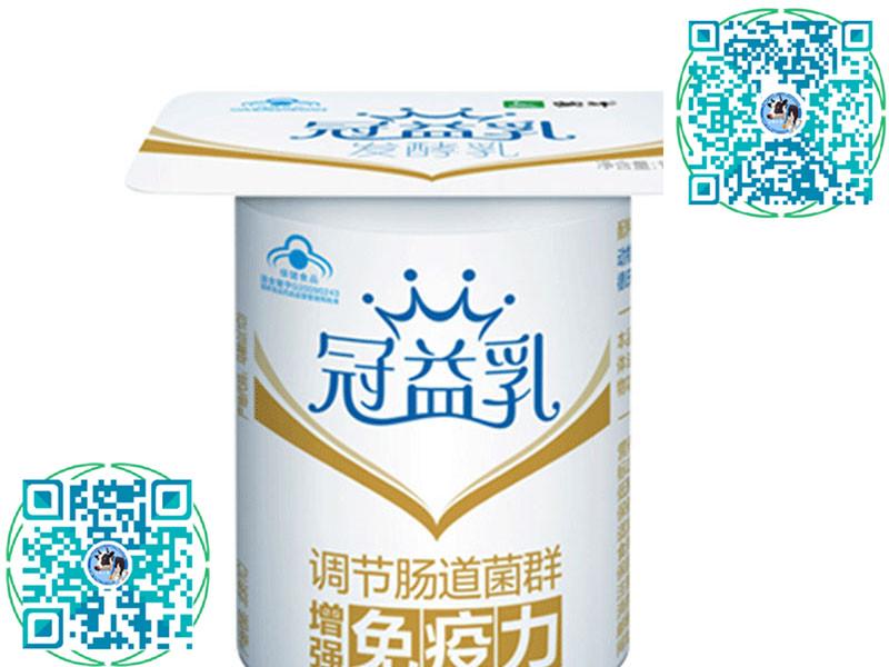 上海牛奶乳酸奶供销 供应安全放心的乳酸奶