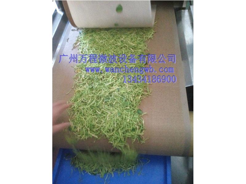 微波杀菌设备供应厂家|广州品牌好的微波茶叶杀青干燥设备供销