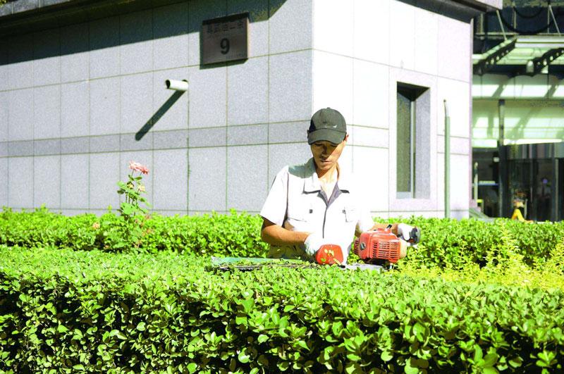 园林养护哪家好 想要专业的园林养护就找绿之乡绿化保洁