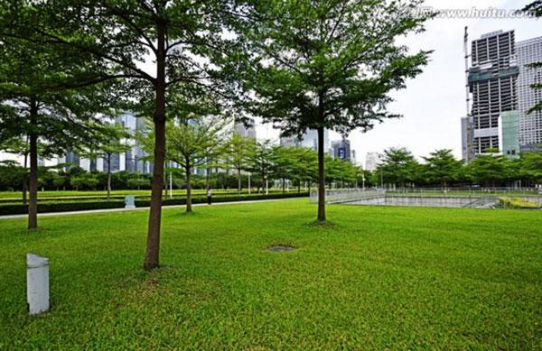 海沧园林设计——绿之乡绿化保洁提供专业的园林出租