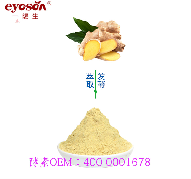 物超所值的生姜酵素粉在哪买-生姜酵素