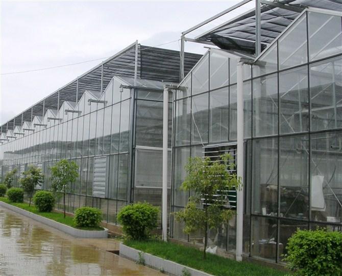 温室大棚造价是多少_新型日光温室