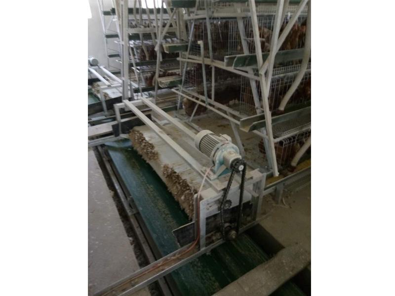 自动清粪机|潍坊销量好的清粪带出售