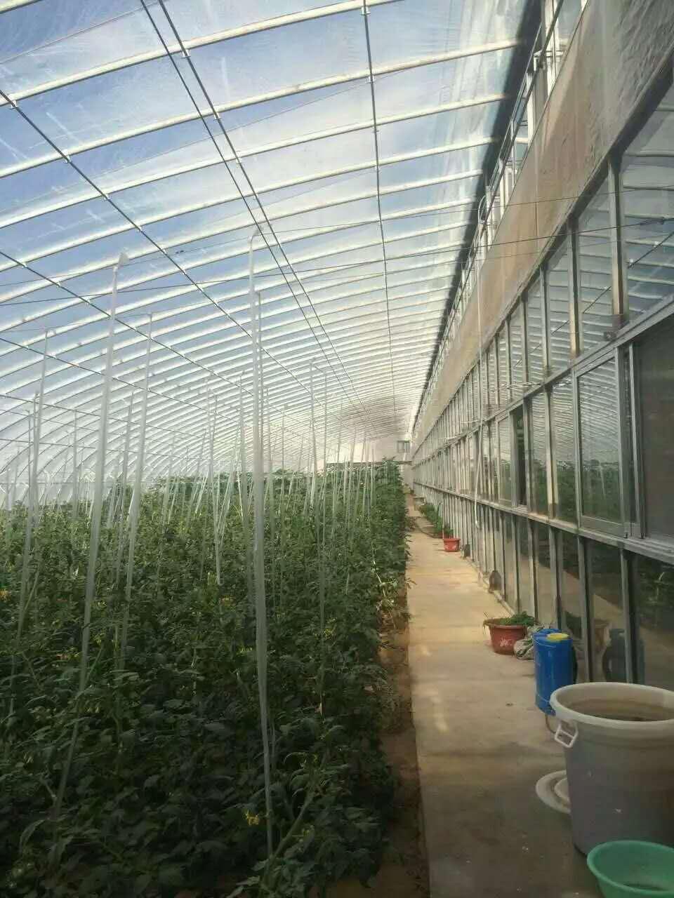 跃鲁农业供应良好的温室工程 山东大棚温室骨架供应商