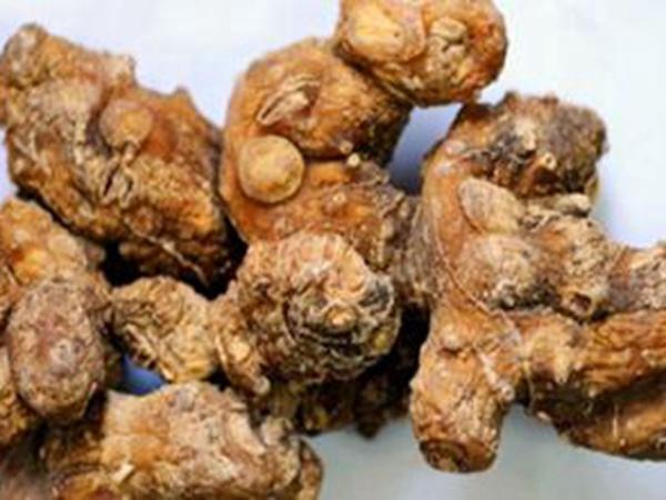 鞍山黄精种子-想买实惠的黄精种子-就来新宾旺富野中药材种植