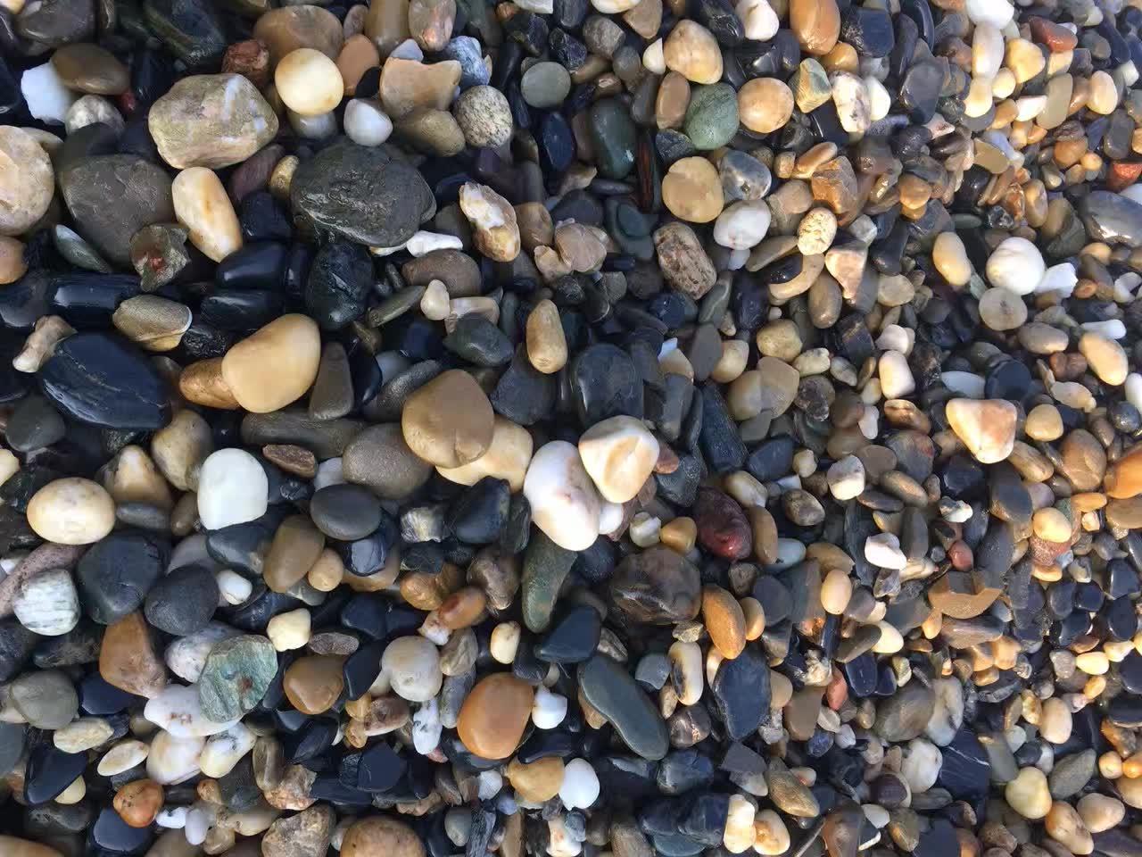 雨花石信息-大量出售河南新款雨花石