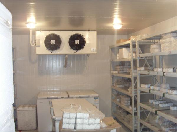 精德制冷設備急凍庫供貨商 阿壩冷庫生產廠家