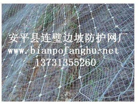 边坡防护网生产厂家_大量供应各种划算的边坡防护网