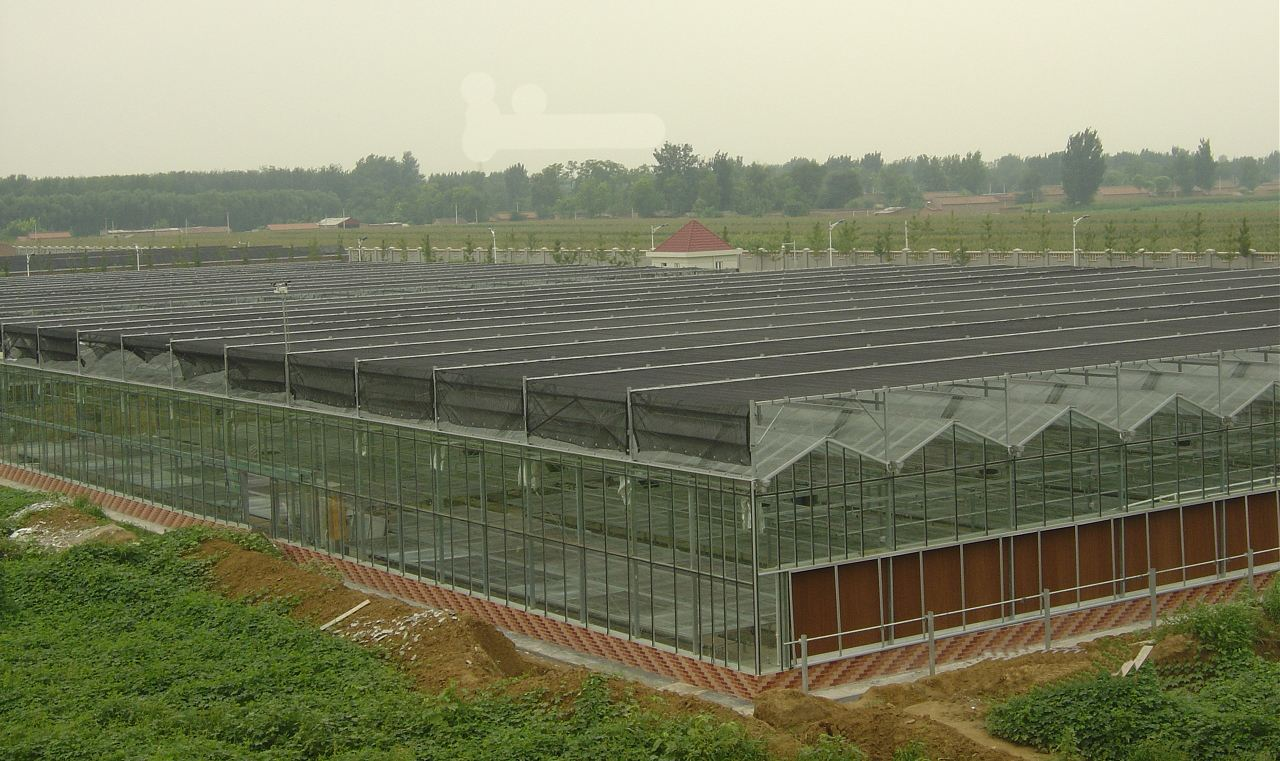 貴州玻璃闆溫室大棚建造-專業靠譜的玻璃闆溫室推薦