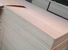 临沂市志国木业信誉好的生态板销售商 防火门专用板厂家