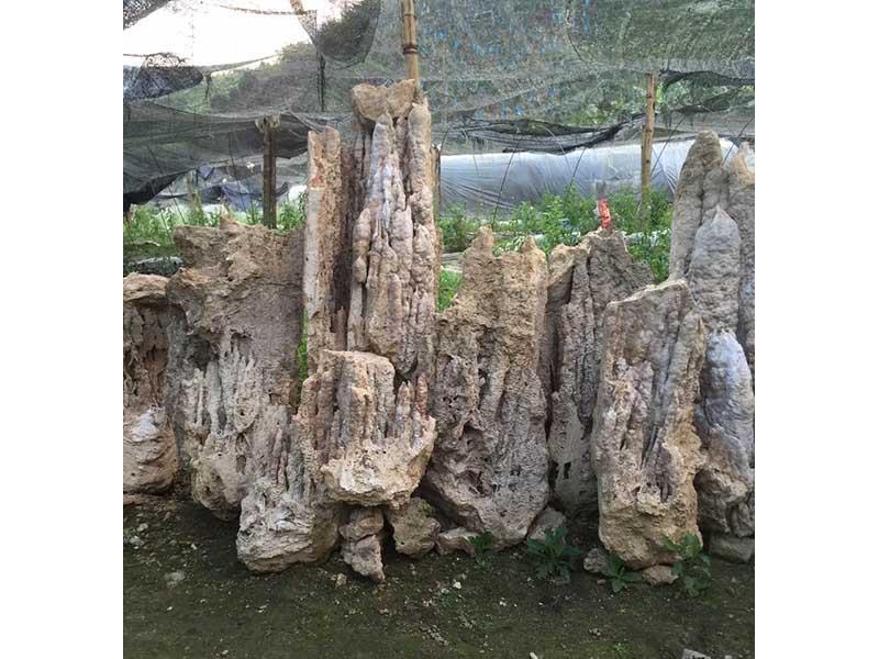 兰州假山石料厂家|甘肃假山园林工程制作厂家