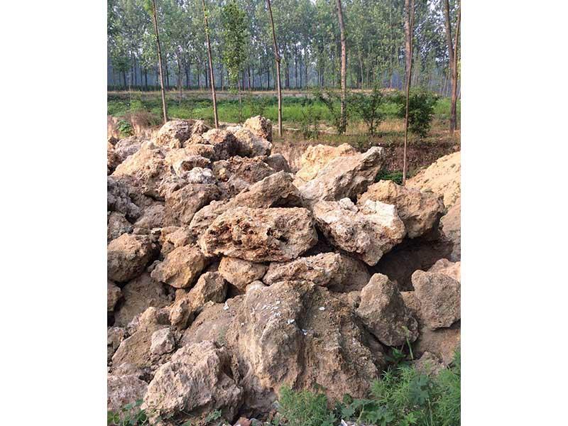 甘肃假山石料|兰州地区实惠的假山园林工程