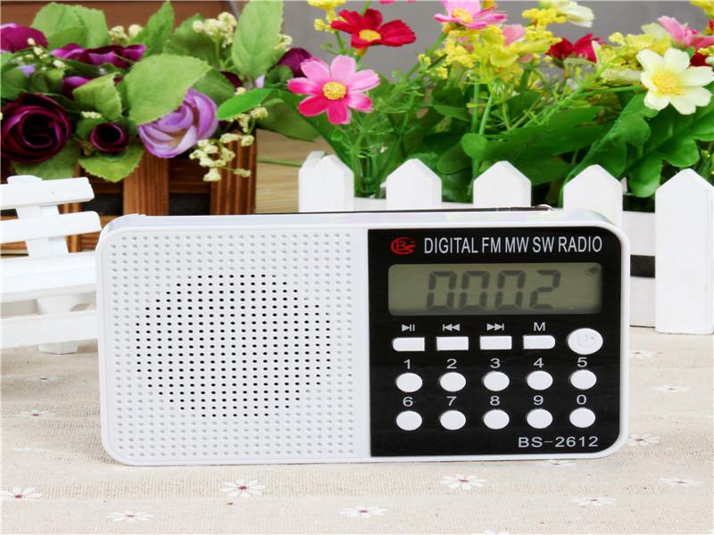 江西FM调频数显收音机|东莞地区品牌好的调频收音机供应商