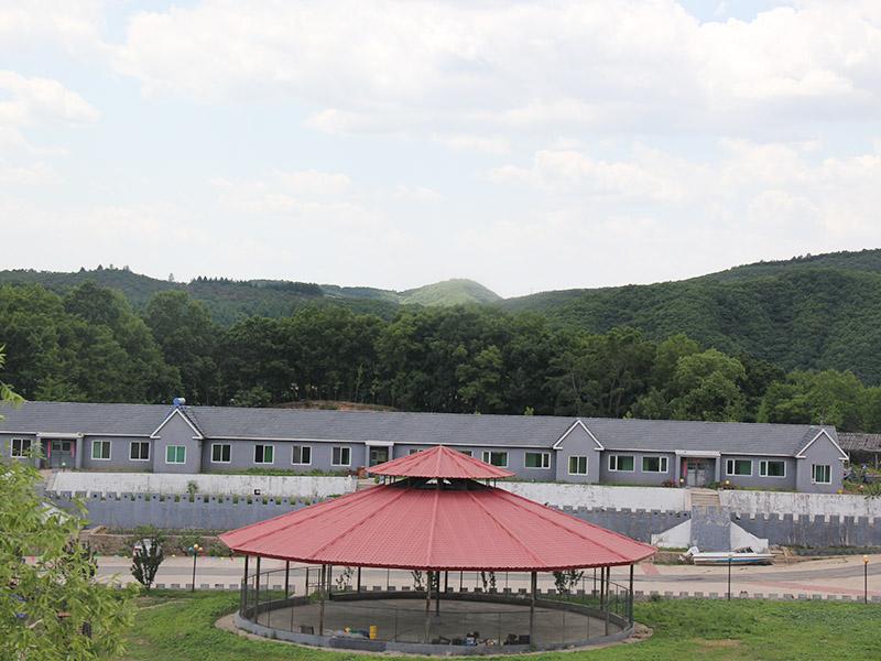凤城大型团体活动-丹东采摘农家菜哪家好