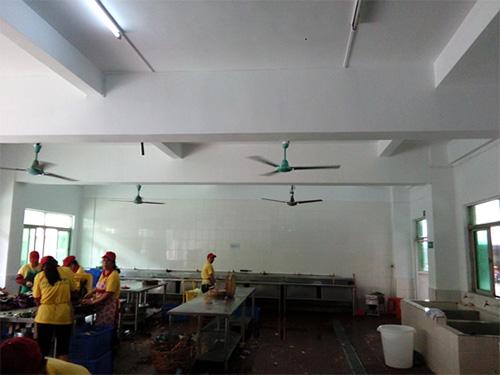 万江室内装修工程-有品质的工厂装修哪里有