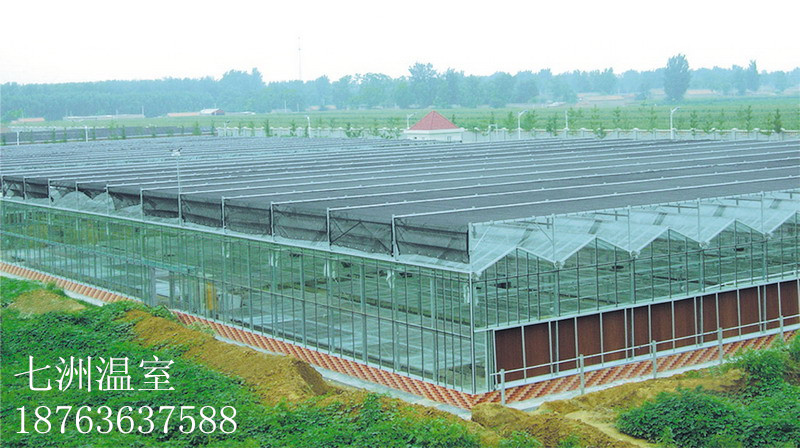 想建日光温室就到七洲温室工程-日光温室大棚造价