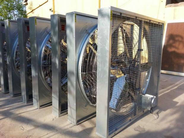 山西養殖風機-物超所值的畜牧風機供銷