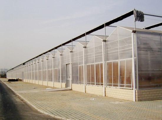蔬菜大棚建设-温室大棚建造厂家